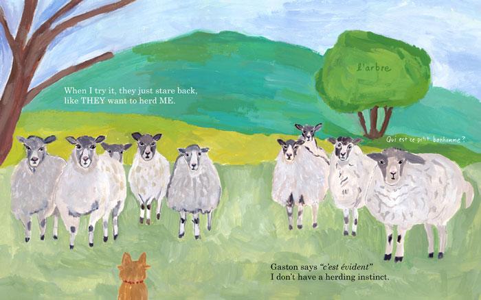 sheep-hud-700w72