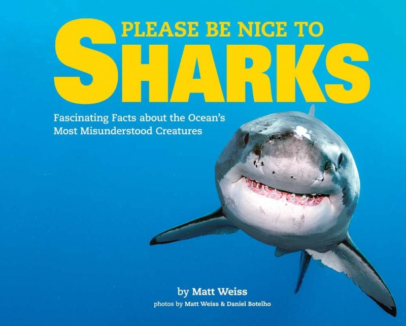 Sharks Cover