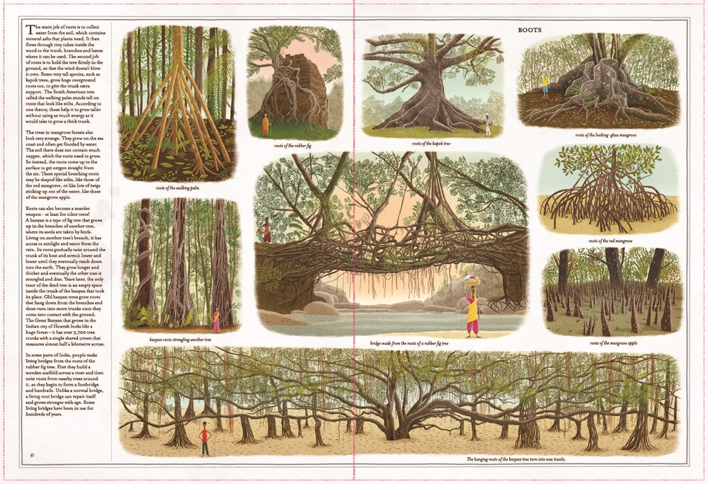 trees 4 - Out Today! Trees: A Rooted History by Piotr Socha and Wojciech Grajkowski